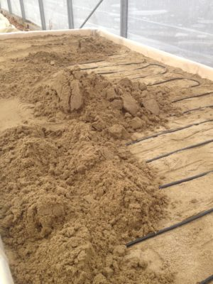 Covering heating cable with sand