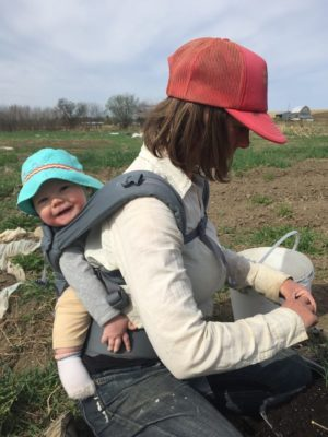 Vegetable farming with a baby on board