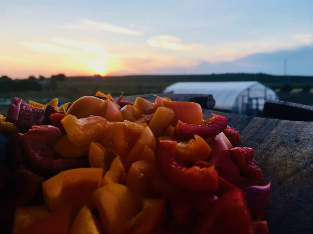 Pepper Sunset