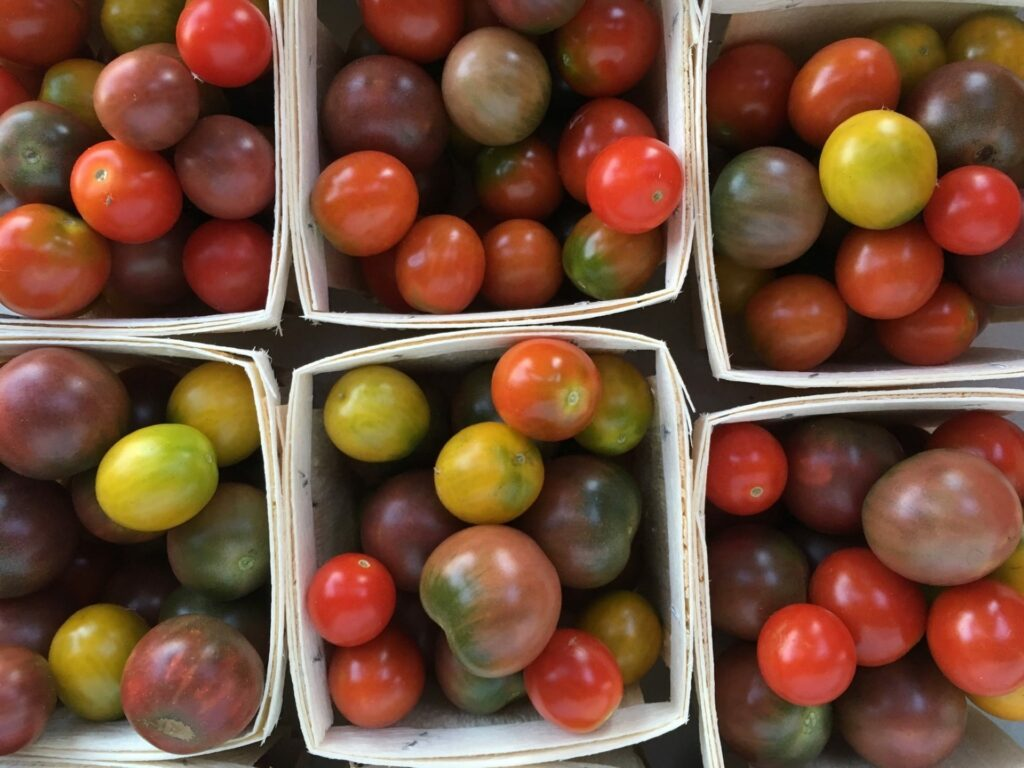 Organic Cherry Tomatoes in Baskets